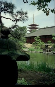 Serenity in a Japanese Temple