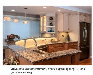 LEDs save our environment, provide great lighting, and save you money!